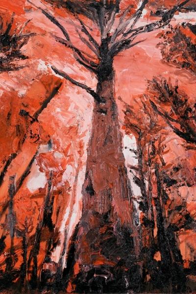 Autre Vertige II, huile sur toile 110x132 cm, 2011