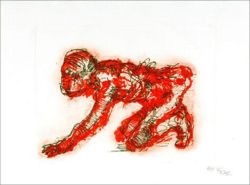Animalité, 2002, gravure, 55x76 cm, Fred Kleinberg, art édition.